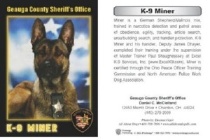 K9 Trading Card