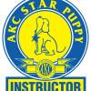 Star INSTRUCTORLogo-FINAL