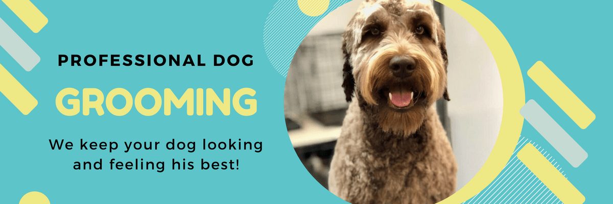 All About Dogs Professional Grooming