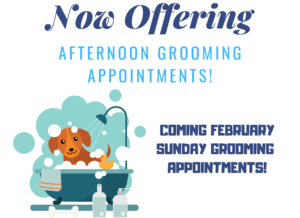 All About Dogs New Grooming Hours