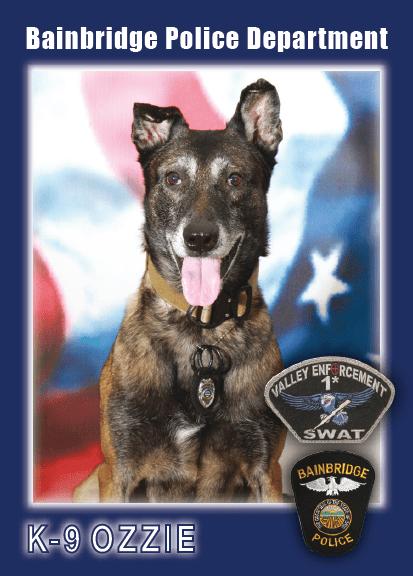 Bainbridge K9 Officer Ozzie
